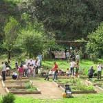 Parchi agricoli = Qualità della vita