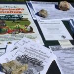 Sensibilizzazione sul tema delle terre pubbliche al parco del Pineto, primavera 2013